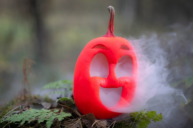 Halloween pumpkin in autumn forest jack lantern with steam from mouthsmoke or fogvaping vegetable