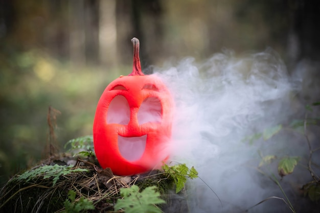 Halloween pumpkin in the autumn forest on an old stump jack lantern with steam from the mouth