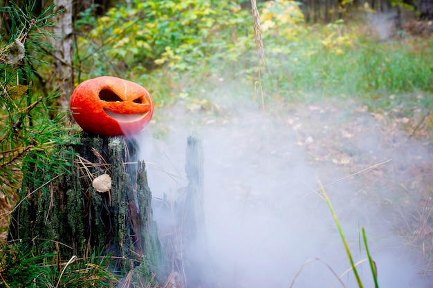 Halloween pumpkin in the autumn forest on an old stumpjack lantern with steam from the mouth