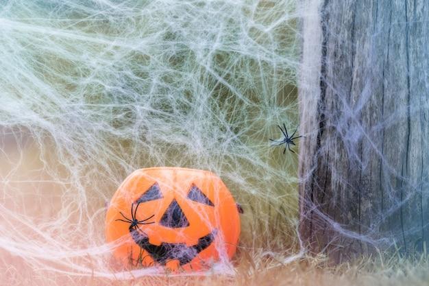 거미줄에서 자연의 잔디에 할로윈 호박 사탕 항아리 해피 할로윈 개념