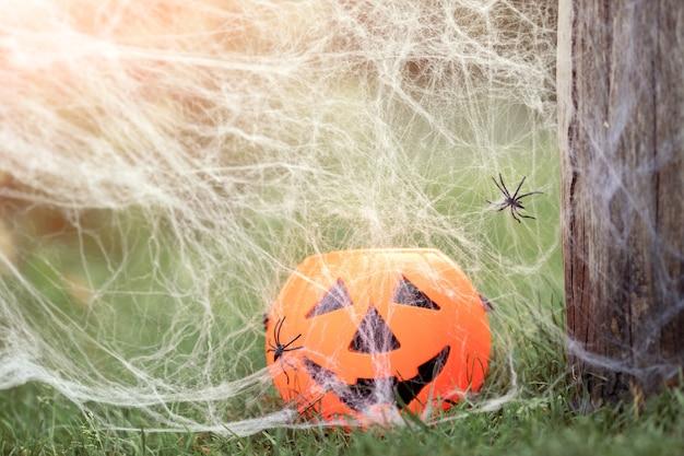 잔디 자연 거미 웹 해피 할로윈 개념에 소름 끼치는 미소와 할로윈 호박 사탕 항아리
