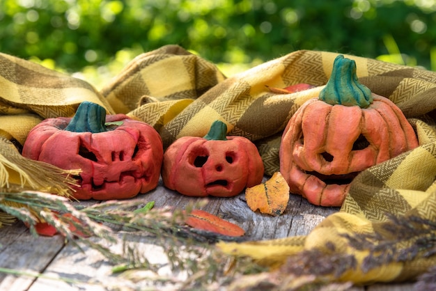 Коллекция тыкв на хэллоуин
