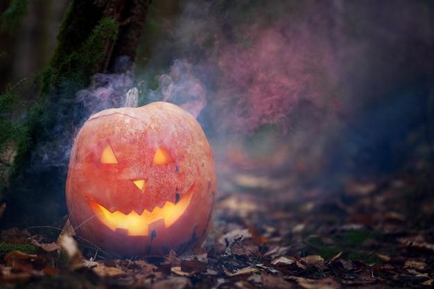 Halloween pumpkin in the dark spooky forest with ghost smoke