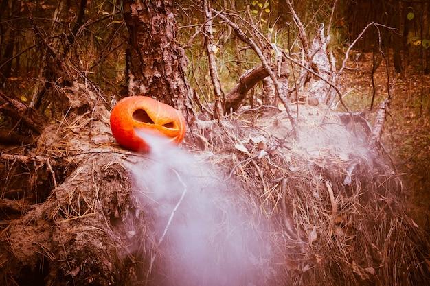 입에서 증기와 함께 오래 된 그루터기 잭 랜 턴에가 숲에서 할로윈 호박