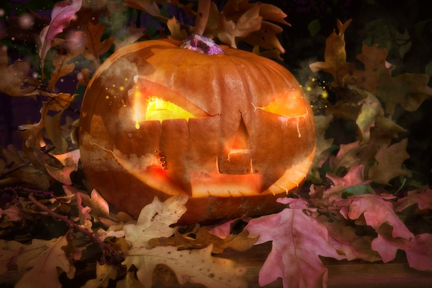Halloween pumpkin outdoors with candle inside and oak leaves