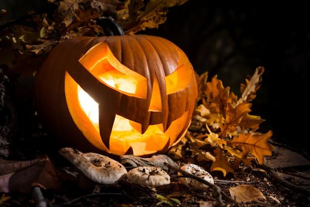 Halloween pumpkin outdoors