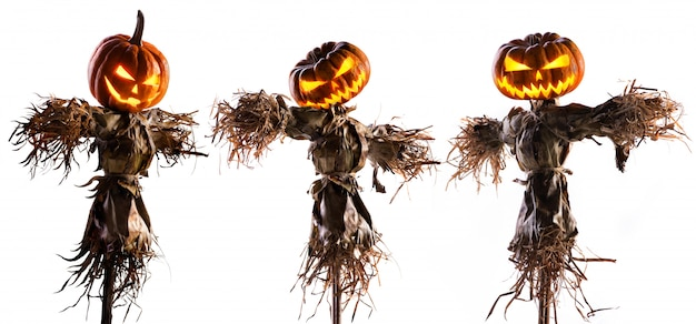 Halloween pumpkin scarecrow isolated on white