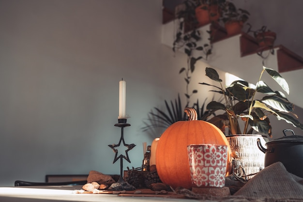 Halloween pumpkin in a table with decoration skeleton candles nuts copy space for text