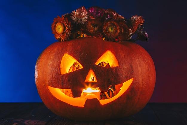 Хэллоуин тыква с цветами в темном освещении. кошелек или жизнь на синем и красном фоне