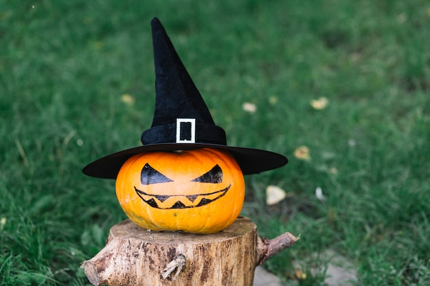 Halloween pumpkin with hat on stump