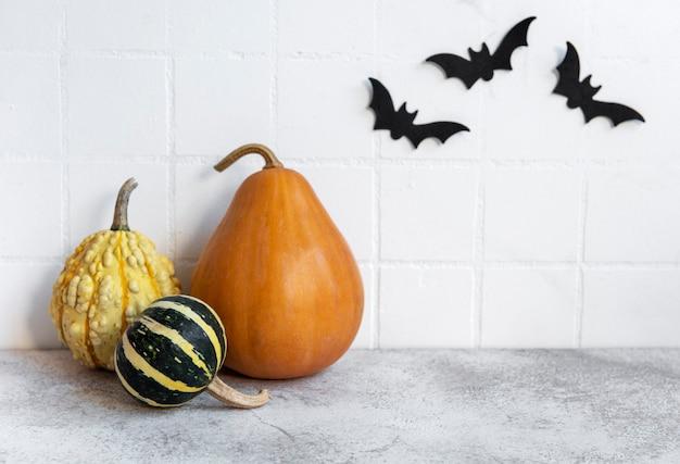 コウモリと白い壁にハロウィーンのカボチャとジャック・オー・ランタンの装飾。