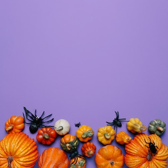 Halloween pumpkins and spiders with copy space in the top