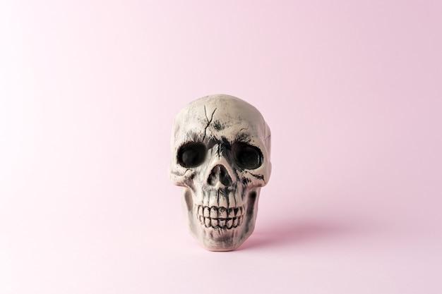 Halloween skull head on a pink background