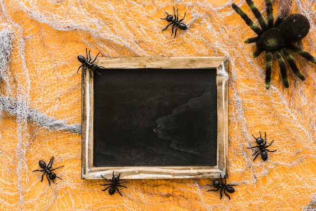Halloween slate composition with spider family