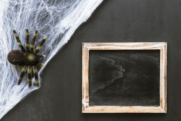 Halloween slate composition with spider