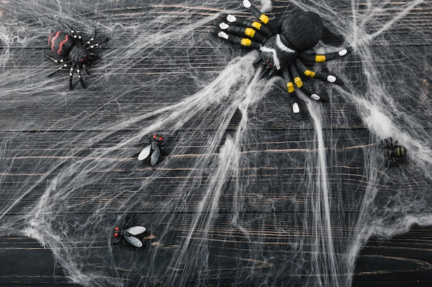 Halloween spiders and flies in spiderweb