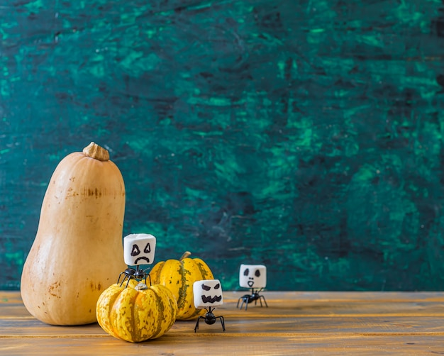 Halloween squash and 2 small pumpkins with funny marshmallows, front view with copyspace on green ,