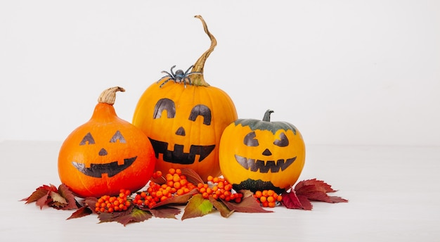 Halloween still life of three orange pumpkins and leaves on a white background