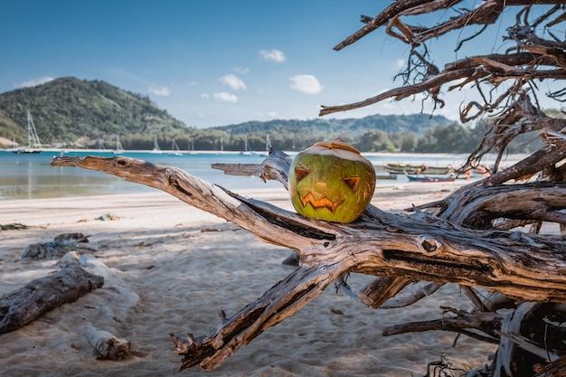 Символ хэллоуина вырезан из молодого зеленого кокоса страшное лицо, похожее на тыкву