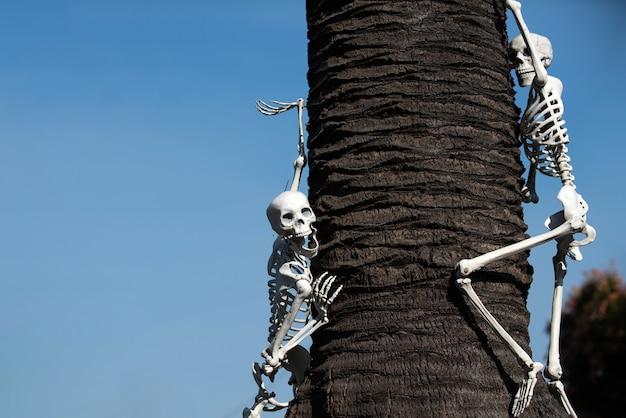 Тема хэллоуина. шаблон со скелетом для баннера на хэллоуин.