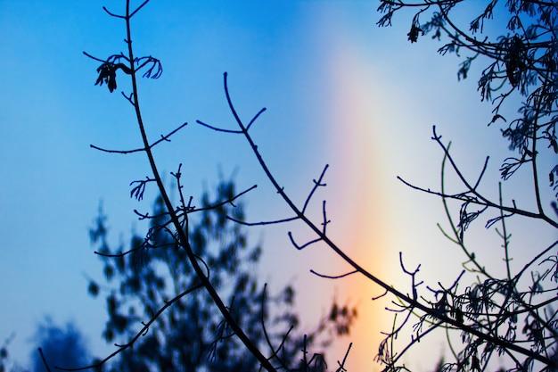 空の明るい背景にハロー。自然の風景。美しい冬の自然。明るい色。空色。