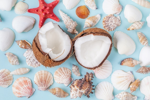Halves of coconut surrounded sea shells and starfish on blue background