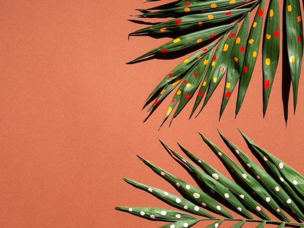 Halves of fern branches with copy space background