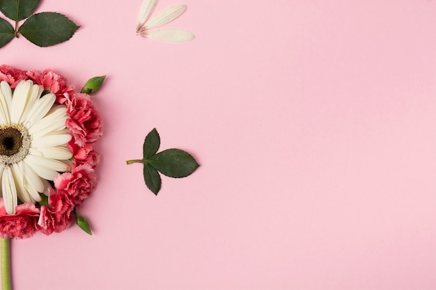 Halves of flowers with pink copy space background