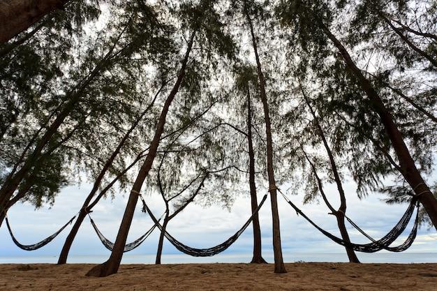 Гамак на пляже и небо в фоновом режиме