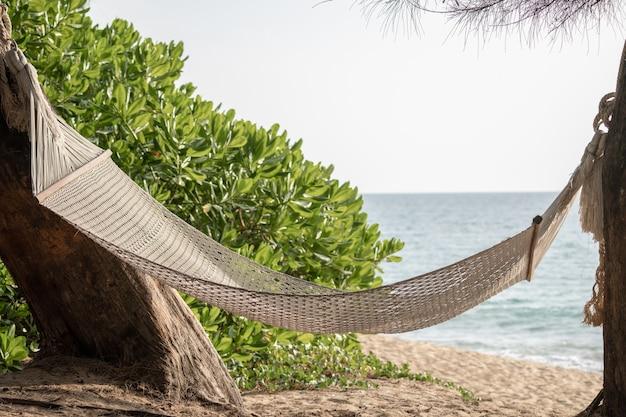 아름다운 해변이 있는 열대 섬에 있는 나무 사이의 해먹 스윙.