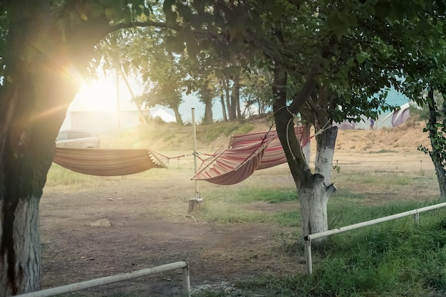Hammocks on trees place to relax