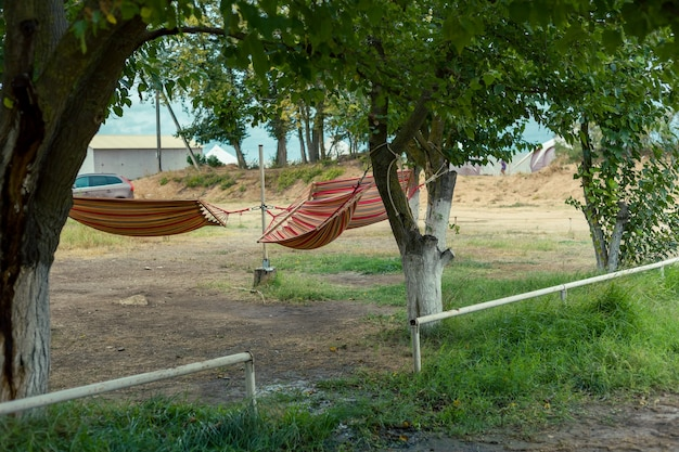 Hammocks on trees, place to relax