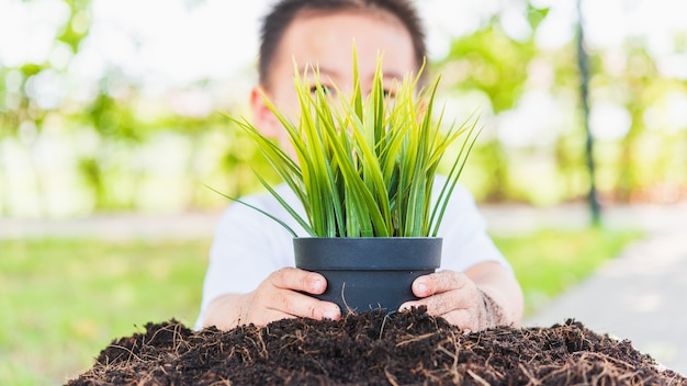 Hand of asian cute cheerful little child boy planting young tree on black soil