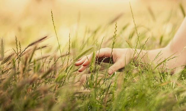 Hand in autumn grass.