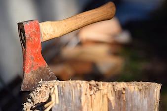 Hand axe in tree stub