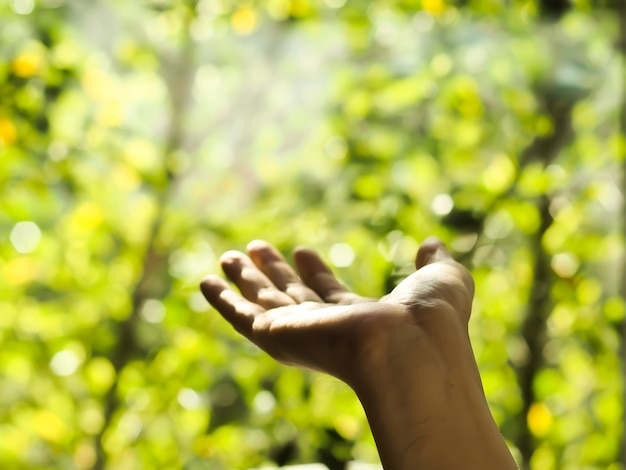 Hand on blurred abstract green bokeh background