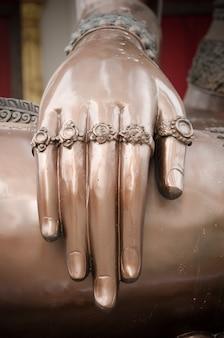 Hand of buddha