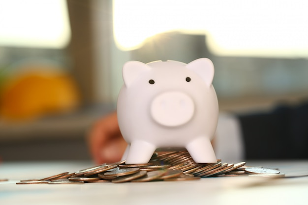 Hand businessman putting pin money into pig