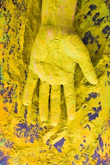 Hand cover with powder paint during holi festival