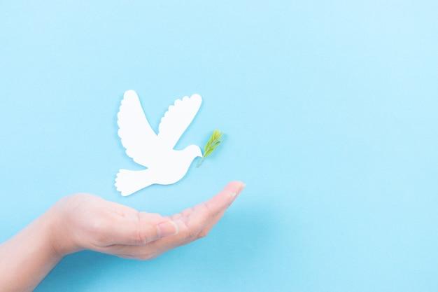 Рука прикрывает белого голубя в воздухе