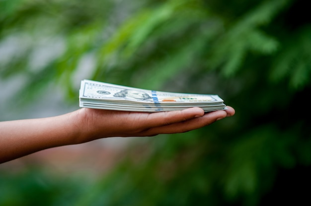 Hand and dollar pictures concept of business finance