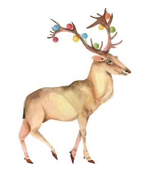 Ручной обращается олень с гирляндой на рогах в акварели на белом фоне идеально подходит для нового года ...