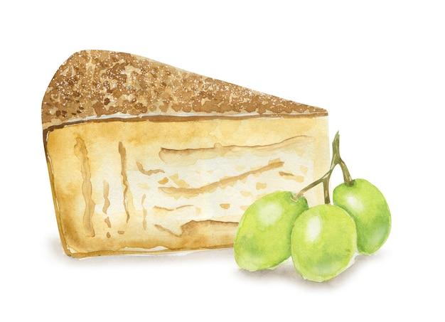 手描きのグリュイエールチーズとブドウ。スイスのベジタリアンの健康食品。水彩イラスト。カード、メニュー、スクラップブッキングのテンプレート