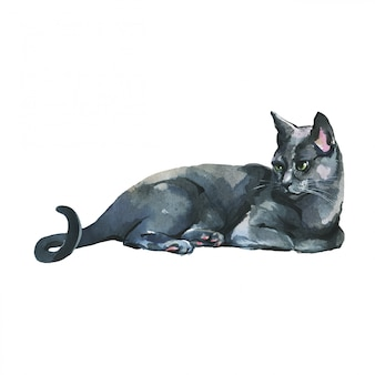 手描きのペットの肖像画。白の水彩ロシアンブルー猫