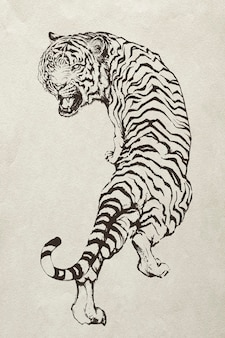 手描きのとどろく虎のイラスト