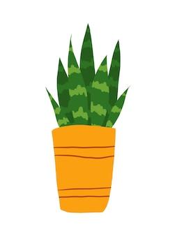 白い背景で隔離の手描きのサンセビリアクリップアート。ポットイラストの緑のサンセビリアの花。観葉植物のクリップアート。