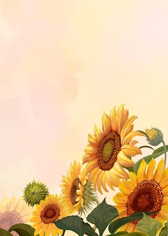 Hand drawn sunflower on a yellow background