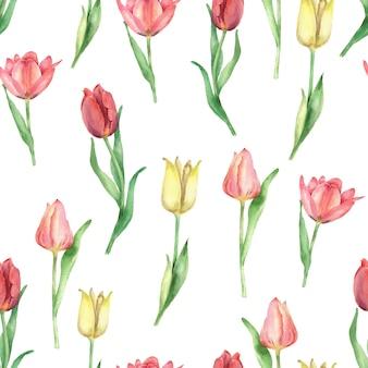 手描きのチューリップのシームレスなパターン水彩花シームレステクスチャ白い背景で隔離