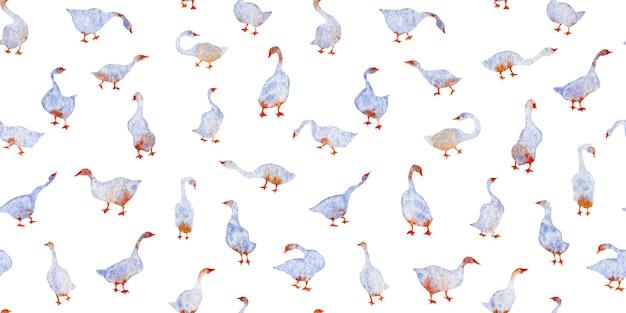 手描きのビンテージ水彩シームレスパターン青いガチョウの白鳥が白い背景で隔離