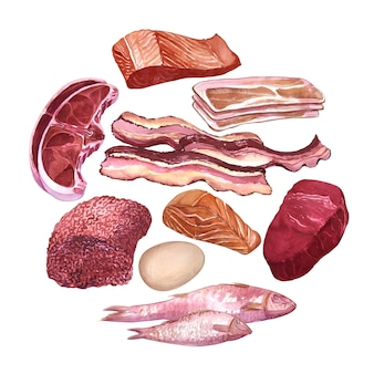 Hand drawn watercolor set of different types of meat, fish, egg.
